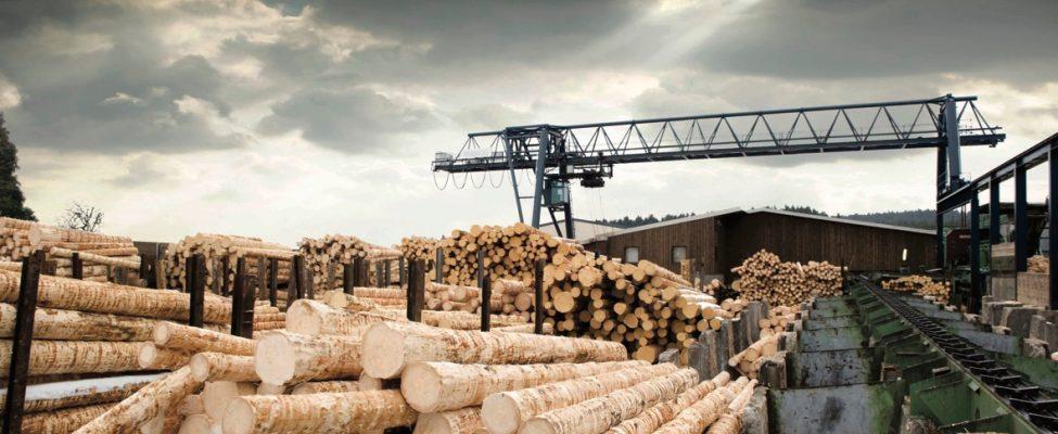 RSPO-Zertifizierung der Lieferkette für Palmöl