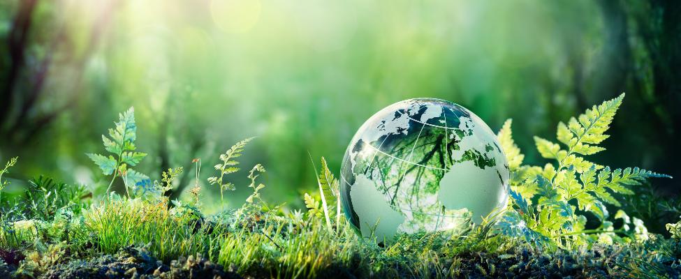 ISCC Internationale Nachhaltigkeits- und Kohlenstoffzertifizierung